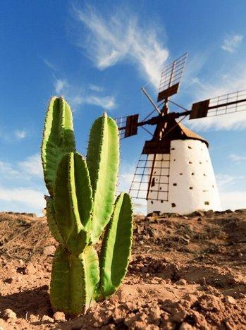 Fuerteventura - co zwiedzić, atrakcje turystyczne
